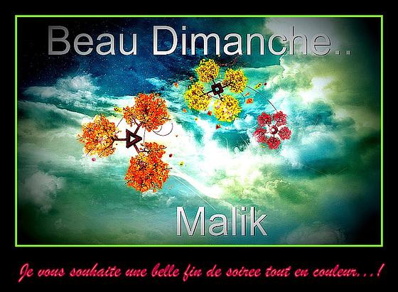Beau Dimanche