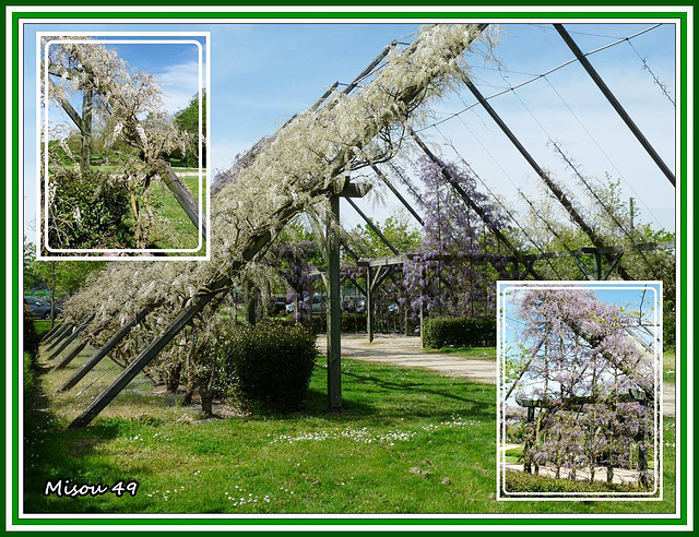 ANGERS   Parc de Balzac