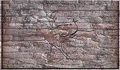 Coups de crayon sur un mur