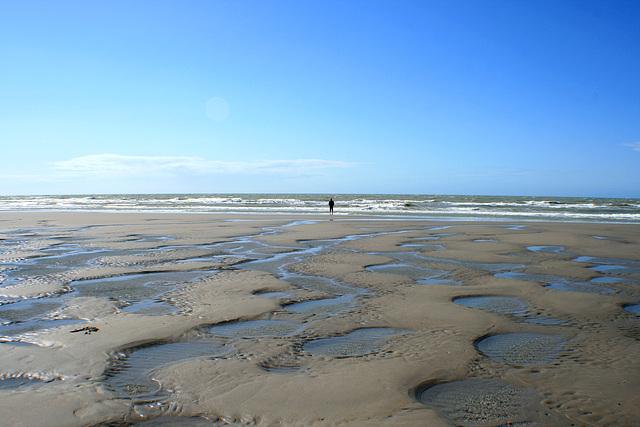 West-Vlaanderen 2012