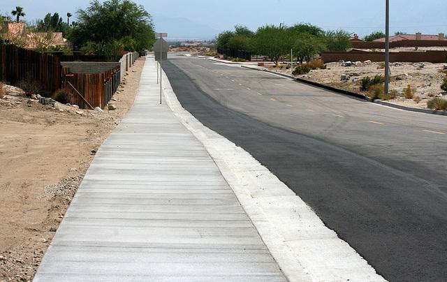 Sonora Sidewalk (6690)