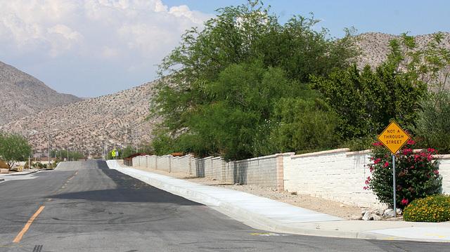 Sonora Sidewalk (6692)