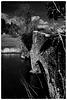Waverley Abbey bridge X-M1 1