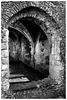 Waverley Abbey ruins X-M1 11