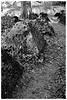 Waverley Abbey Dragon's Teeth Tank Trap X-M1 3