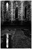 Waverley Abbey ruins X-M1 6