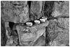 Waverley Abbey ruins X-M1 3