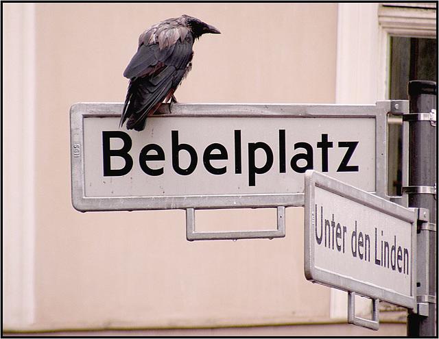 Berlin 2010 284