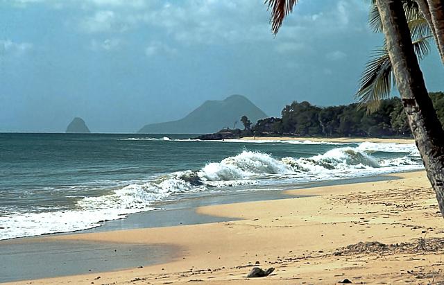La Martinique #39