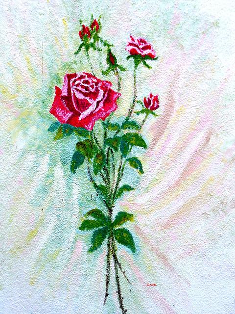 Roses !