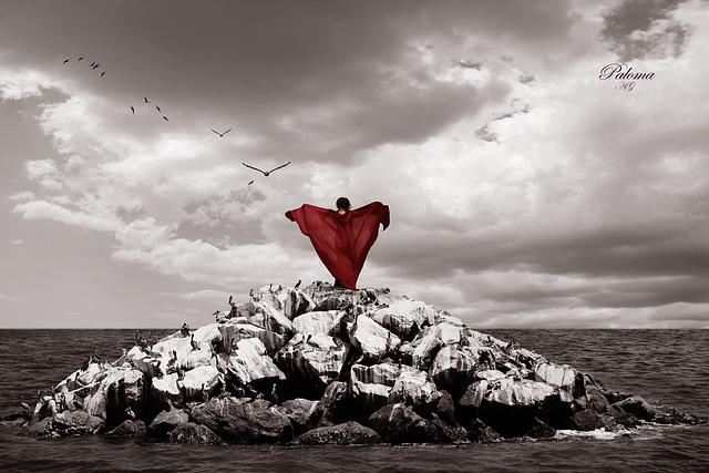 Migrar, donde habita el olvido... Ƹ̴Ӂ̴Ʒ