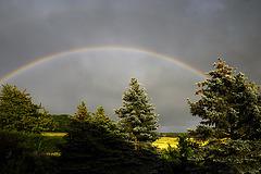 Ein Regenbogen  ...