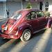 Classic VW / Petite cox impeccable - 10 avril 2011.