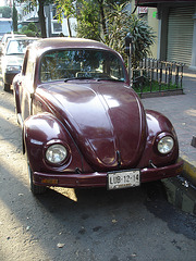 Classic VW / Petite cox impeccable