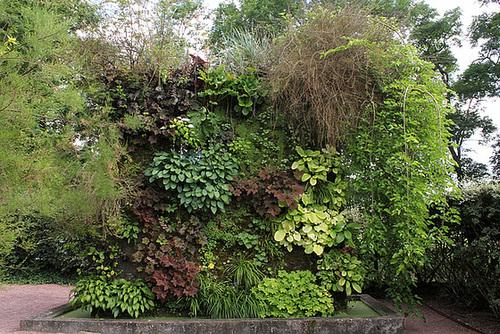 Murs végétalisés- le plus petit