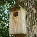 Bird's house / Cabane à oiseaux - 10 juillet 2010.