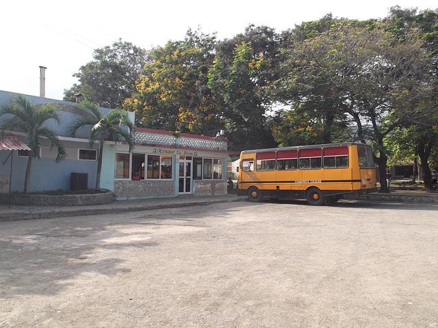 Scolarité gastronomique / Gourmet bus.
