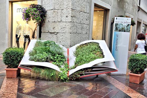 Grünpflanzen-Deko in Trient