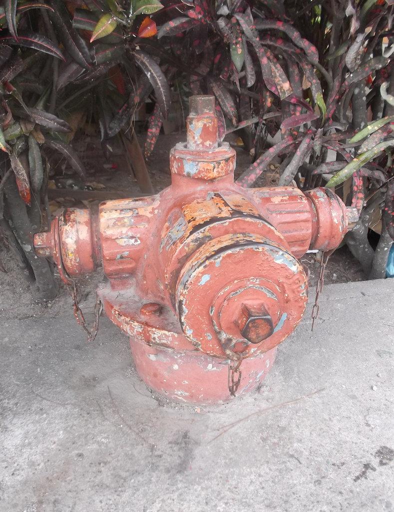 Borne à incendie panaméenne / Panamanian fire hydrant.