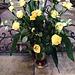 des roses jaunes