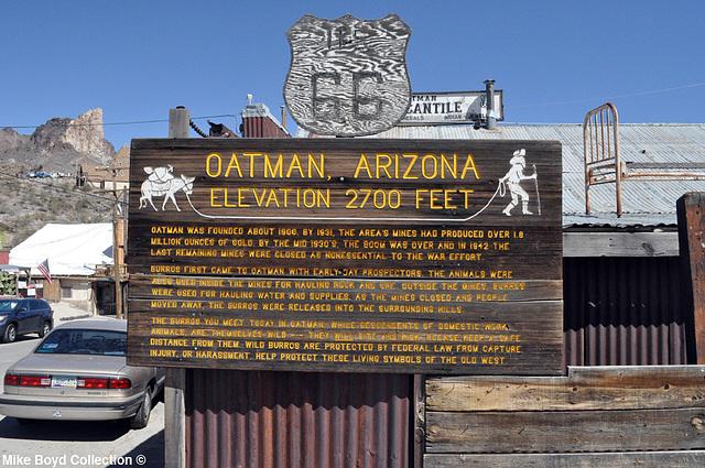 AZ town of oatman 06'14 02