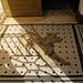 Wachhund-Mosaik