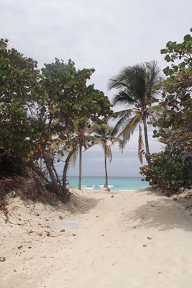 Plage cubaine / Cuban beach / Playa de Cuba - 5 mai 2012