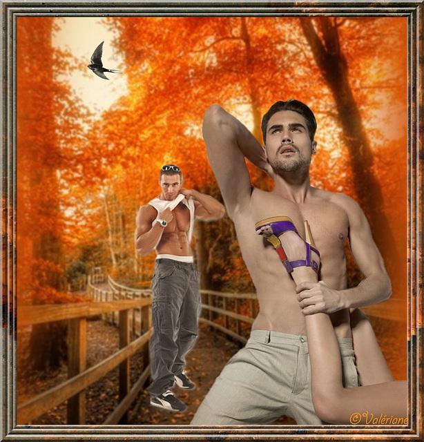 Dans les sous-bois......In the woods.........Création Valeriane.