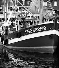 CN 238289