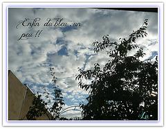 ** Bonne fin d'après midi **