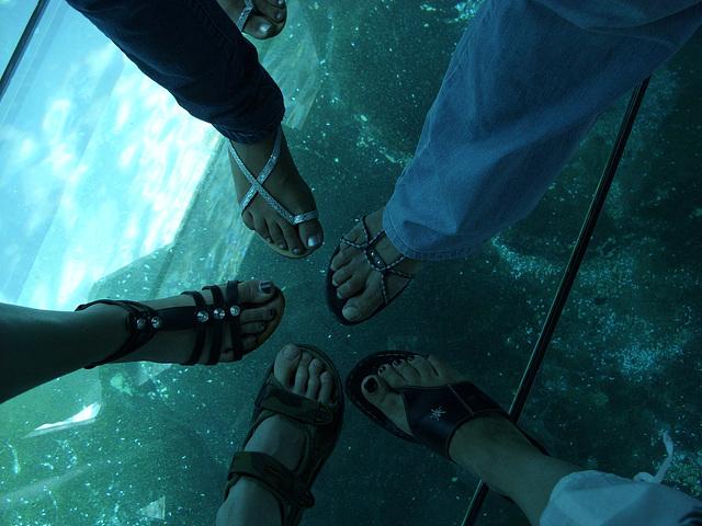 My friend / Mon amie Mpé - Les pieds en étoiles et la tête dans l'aquarium /  Starry Feet with head in aquarium  - 20 juillet 2010