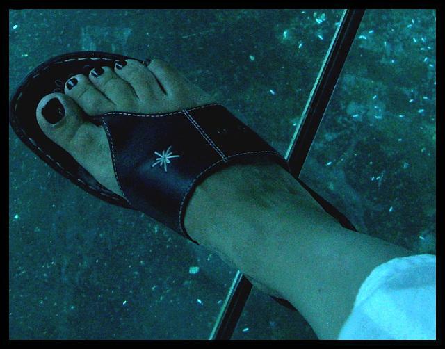 My friend / Mon amie Mpé - Les pieds en étoiles et la tête dans l'aquarium /  Starry Feet with head in aquarium  - 20 juillet 2010 - Recadrage
