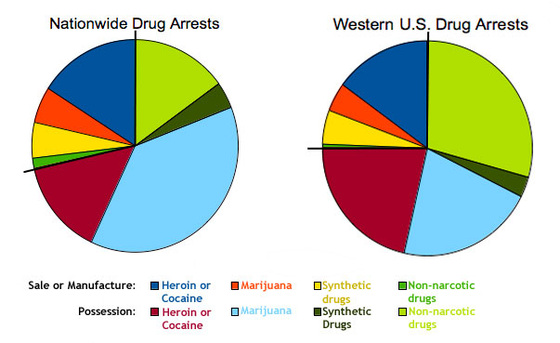 American Drug Arrest Percentages For 2011