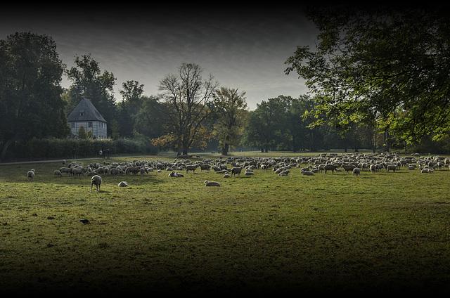 Park an der Ilm mit Goethes Gartenhaus