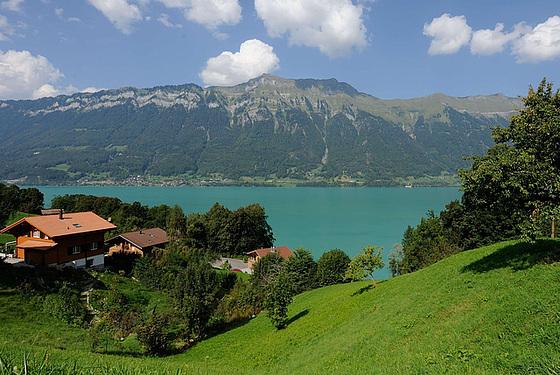 Paysage de l'Oberland bernois...