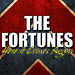 Here It Comes Again - The Fortunes