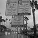 (16-38-56) Great LA Walk