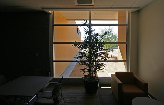 DHS Community Health & Wellness Center (7329)
