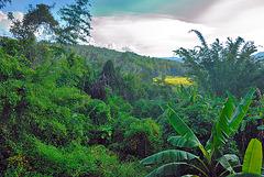 Beautiful landscape around Doi Inthanon