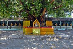 Buddha galerie in Wat Thai Watthanaram