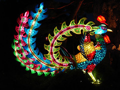La magie des lanternes chinoises / The magic of chinese lanterns