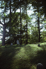 Ancient cemetery near Tanglewood
