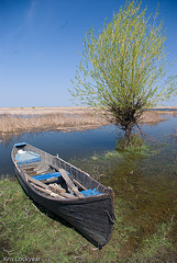 Romanian Boat-2