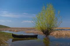 Romanian Boat-1
