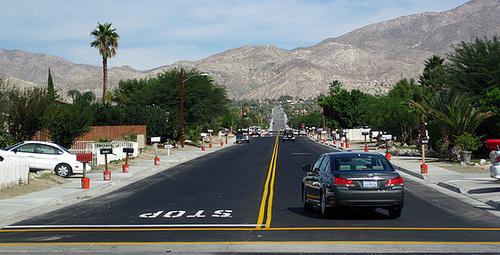 Cactus Drive (3287)