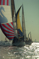 The big, colorful sail is called the spinnaker
