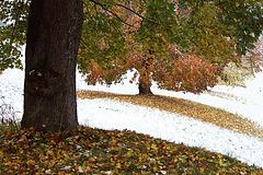 Wenn Herbst und Winter sich zu früh verabreden...