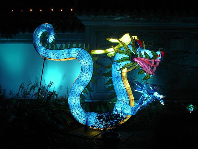 La magie des lanternes chinoises / The magic of chinese lanterns