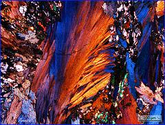 lame de roche prise au microscope optique