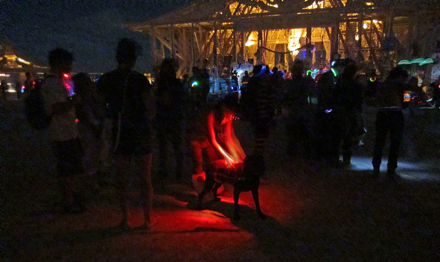 A Dog At Burning Man Temple Of Juno (1156)